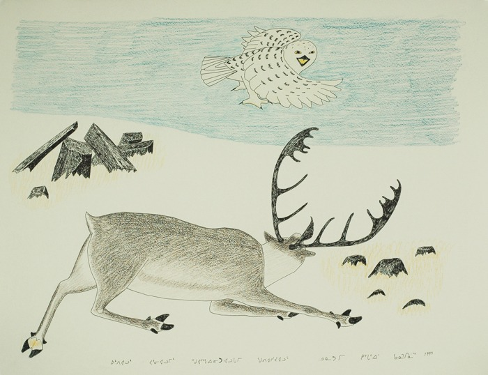 caribou and owl Inuit Art Litograph