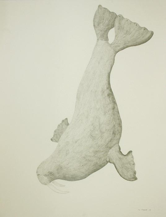 Walrus by Tim Pitsiulak Drawing