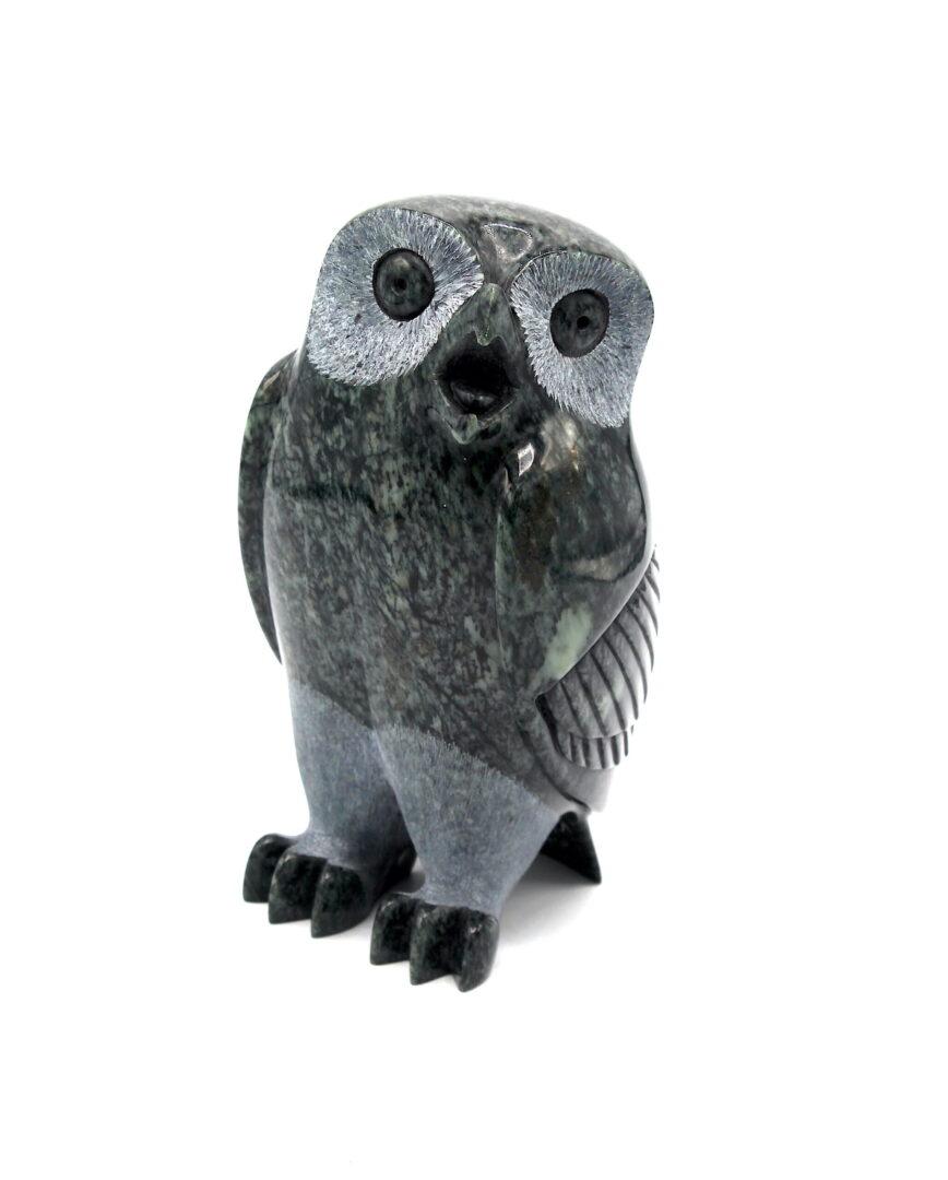 Owl by Pits Qimirpik kimmirut serpentine stone