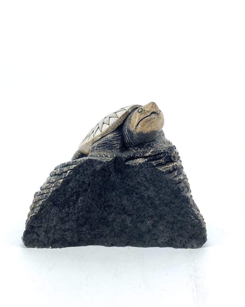 Sun Turtle 44 1035 by Eric Silver Soapstone sculpture oneida iroquois
