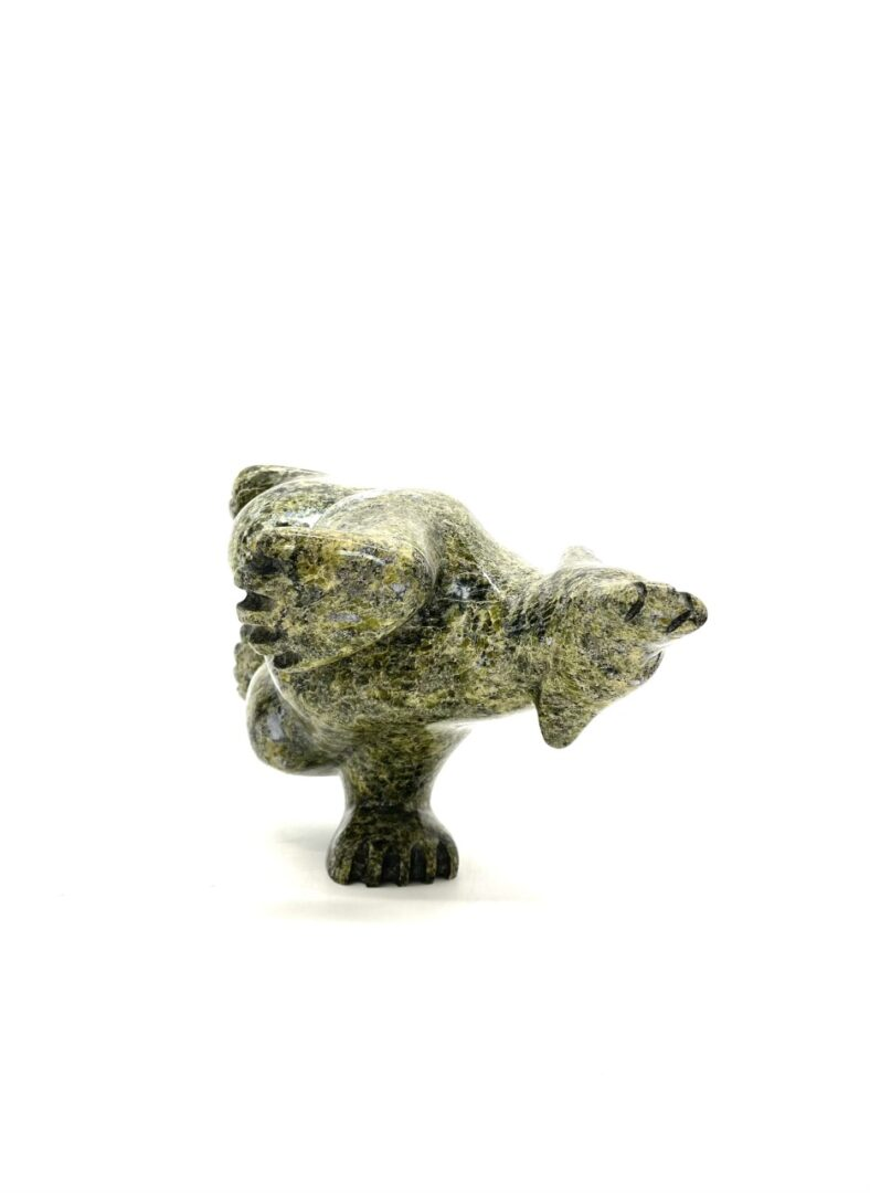Diving Bear 65933