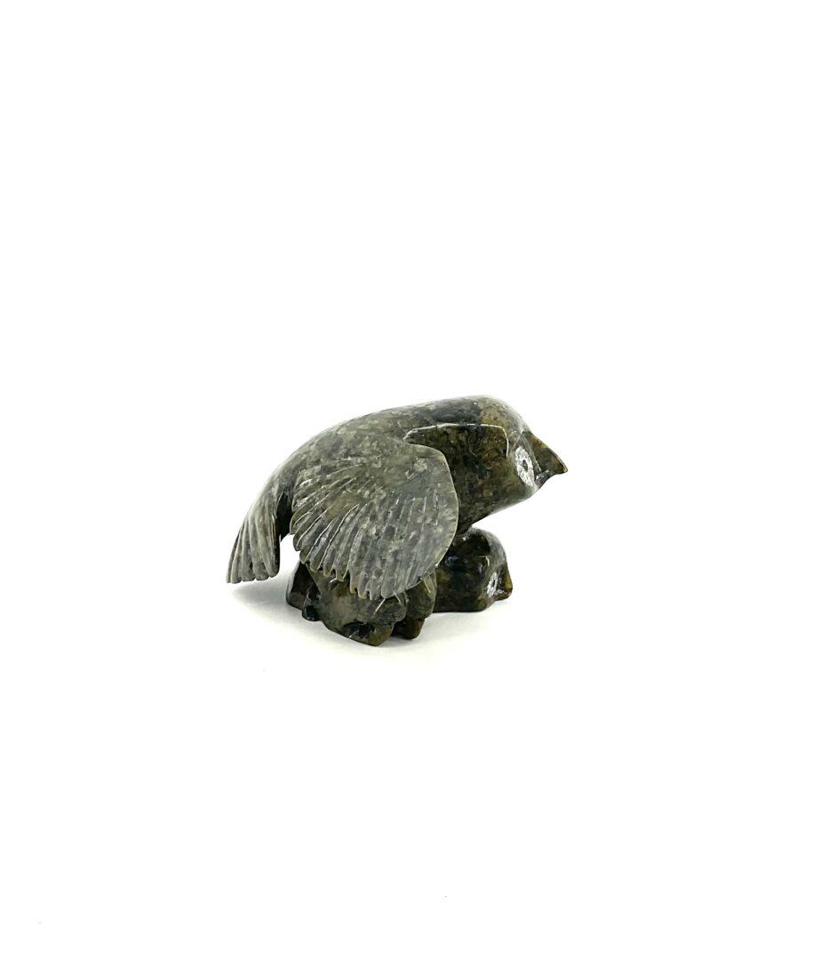 One original Inuit art sculpture hand carved in serpentine by Kellipallik Qimirpik ''Bird 57453